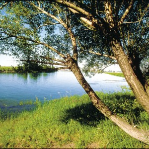 paysage ile boucherville